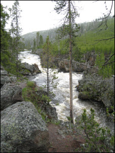 Picture of the Firehole River.
