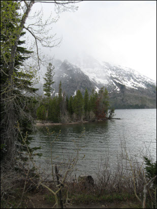 Picture of view of Jenny Lake.