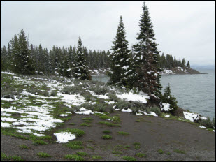 Picture of Yellowstone Lake.